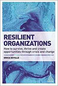 Resilient Organizations - Book Cover